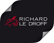 Камины Richard-Le-Droff
